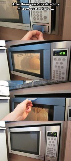 Dump A Day Funny Pictures Of The Day - 75 Pics: Three Years, Giggle, Blue Microwave, Funny Pictures, 3 Years, Funny Stuff, Funnies