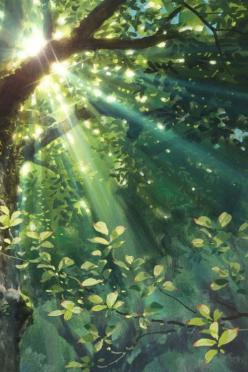 Exquisite: Nature, Green, Beautiful, Art, Trees, Forest, Photo, Light, Sun