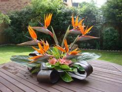 flower arrangement is one I would have in my home ---- love the colors and combo of plant choices very nicely stylized floral arrangement: Tropical Flowers Arrangements, Carissa Centros Florales, Arreglos Florales Tropicales, Arrangements Small, Floral Ar