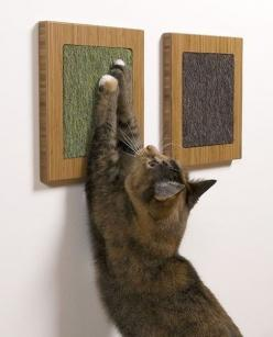 Framed cat scratch posts.  Such a cool idea, especially since you can mount it at the perfect height for your cat! #catfurniture #coolidea: Cat Furniture, Idea, Wall Scratcher, Stuff, Pets, Cat Scratcher, Diy, Animal