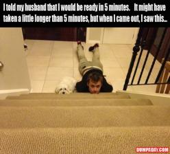 Funny Pictures: Giggle, My Husband, Funny Picture, Funny Stuff, Funnies, Humor, Dog