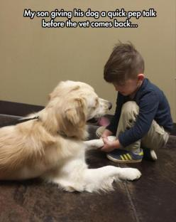 Funny Pictures Of The Day – 72 Pics: Quick Pep, Animals, Dogs, Sweet, Funny Pictures, Pet, Funny Stuff, Pep Talks, Kids