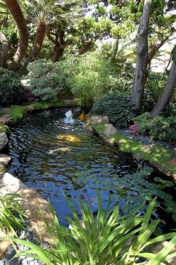 garden pool ReikiLifeStyle6_15 by Reiki Life Style, via Flickr: Backyard Water Feature, Backyard Koi Pond, Garden Ideas, Backyard Ideas Garden, Garden Ponds, Backyard Ponds Ideas, Backyard Fountain, Backyard Fish Pond, Water Garden