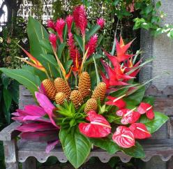 Google Image Result for http://caribbeantrading.com/convention-group-gifts/wp-content/uploads/tropical_flowers_2.jpg: Exotic Flower, Tropical Floral, Flower Arrangements, Beautiful Flowers, Floral Designs, Floral Arrangements, Tropical Flowers
