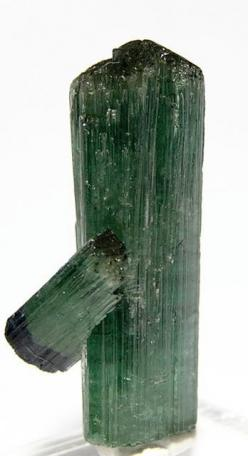 Green Tourmaline Crystal Specimen Vintage by FenderMinerals: Fossils Minerals Archaeology, Gemstones Minerals, Crystals Minerals Gemstones, Geode, Color, Crystals And Gemstones, Minerals And Gemstones, Crystals Gems Minerals, Gemstone Distributors