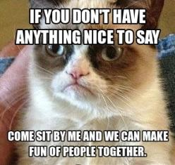 Ha ha ha that's definitely sandy and me!!!: Grumpycat, Cat 3, Grumpy Cat Quotes, Cat Love, Heehee, Funny, Angry Cat, Friend, Cat Memes