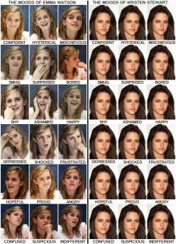 hahaha - SO TRUE!: Emmawatson, Emma Watson, Harrypotter, Kristen Stewart, Funny Stuff, So True, Harry Potter, Kristenstewart