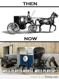 hahaha: Well Played, Horses, Funny Stuff, Played Horse, Funnies, Humor, Wellplayed, Animal