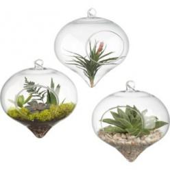 Hanging Glass Terrarium by cb2: $6.95 http://tinyurl.com/18r #Terrarium: Decor, Ideas, Glasses, Plants, Hanging Terrariums, Garden