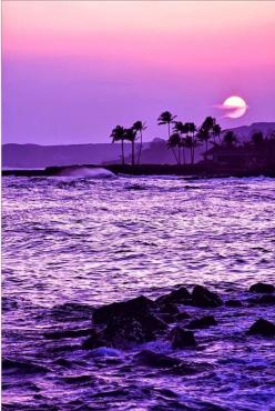 Hawaii Sunset: Hawaii Sunset, Beautiful, Sunsets Sunrises, Purple Sunset, Sunrise Sunset, Color Purple, Things Purple, Place, Hawaiian Sunset