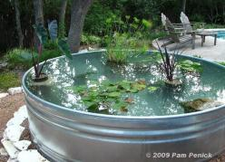 How to make a container pond in a stock tank | Digging: Ponds, Idea, Water Features, Outdoor, Water Garden
