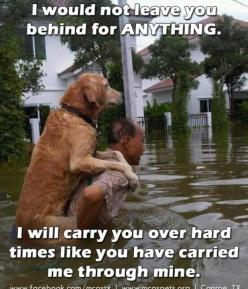 I'd do anything for my,dog!: Animals, Dogs, Sweet, Best Friends, Mans Best Friend, Pets, Things, Photo