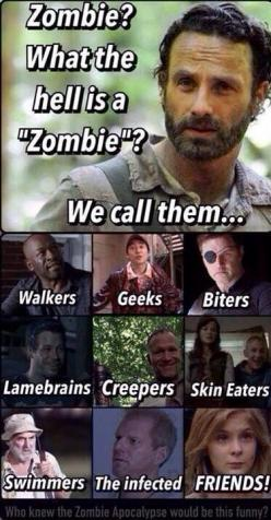 I didn't think too much of this pin until I got to the last frame...Bahaha!: Geek, Thewalkingdead, Ahaha Friends, The Walking Dead Lizzie, The Walking Deadd Funny, Walking Dead Lizzy, Zombies, Twd Friends
