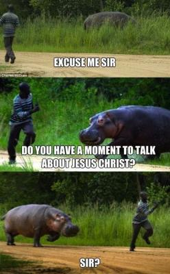 I don't know why I thought this was so funny lol.: Sir, Hippo, Giggle, Excuse Me, Funny Stuff, Funnies, Humor, Animal