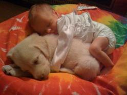 I love babies and puppies!!!: Babies, Animals, Dogs, Sweet, Adorable, Puppy, Friend