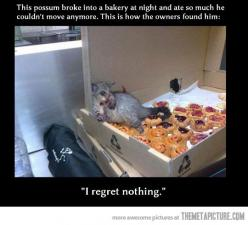 I regret nothing: Bare, Giggle, No Regrets, Funny Stuff, Funnies, Awesome Possum, Animal