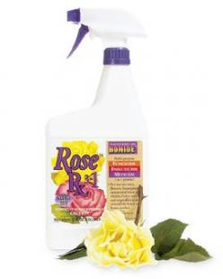 I swear by this for my roses, it keeps the black spot at bay, wards off the bugs and is cost effective. I start using it mid June before the humidity kicks in Ohio: Garden Who How, Garden Ideas, Rx 3 In 1, Rose Rx, Garden Tips, Growing Roses, Beautiful Ga