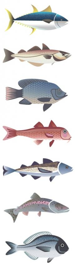 Illustrations for Selfridges' Project Ocean fish guide by Sanna Annukka: Fish 2, Fish Fish, Fish Art, Fish Illustrations, Fische Illustration, Clay Fish, Fish Design