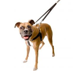 """Is your dog's pulling driving you crazy? If so, you've gotta get a Freedom No Pull Harness! Seriously, it will make walking with your best friend fun again! The 1"""" wide Freedom Harness features a patented control loop on the back of the harnes"""