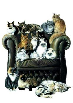 Leather chair - good idea! Far easier to wipe all that cat hair off!: Cat Art, Animals, Crazy Cat, Cats Life, Cat Lady