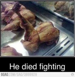 "LMAO. The Bravest ""Dead"" Chicken of all time.: Chicken, Kung Fu, Funny Stuff, Died Fighting, Humor, Funnies, Funnystuff"