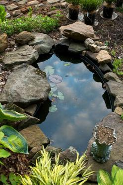 Loving the Garden Pond by Chiot's Run: Water Feature, Backyard Ponds, Small Backyard, Small Gardens, Small Garden Ponds, Water Garden