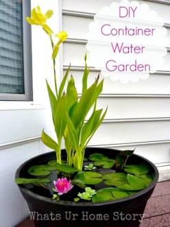 Make your own water garden on your deck or porch! You can even have fish in it. DIY container water garden tutorial. www.whatsurhomestory.com: Ideas, Container Water Gardens, Diy'S, Water Features, Outdoor, Diy Container, Watergardens
