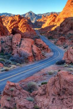 MY DAD Brought us to a place with some of this, But, *WOW~!   I LOVE THIS I Would go walking amoungst it.: Winding Road, State Parks, Arizona Highway, Road Trips, Photo, Roads, Roadtrip