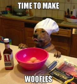 Oh, dog. I laughed a little too hard at this.: Animals, Dogs, Bacon, Woofle, Funny Stuff, Funnies, Funny Animal, Chief