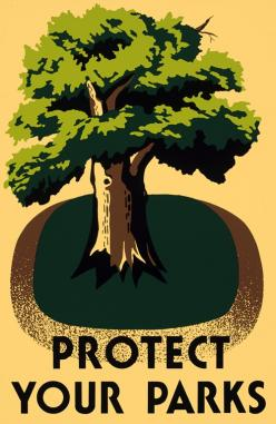 Protect Your Parks poster: Vintage Posters, Parks 17X22, Tree, Poster Art, Wpa Posters, Products, Design