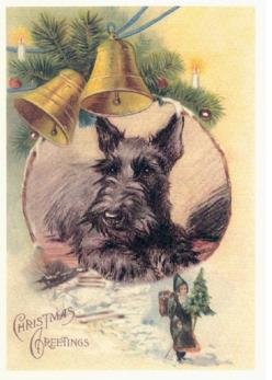 Scottie Dog Christmas Bells Card s XMAS Scotty Scottish Terrier Christmas Cards Scotty Holiday: Christmas Cards, Christmas Scottie, Scottie Dogs, Vintage Scottie, Terrier Christmas, Christmas Vintage, Scottish Terriers