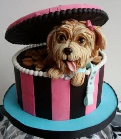 Shock and Awe Sweets (@Bendrix) - dog in a box cake. this is very creative and almost looks real :): Dog Cakes, Dogs, Amazing Cakes, Puppy, Beautiful Cakes, Four Legged Cutie, Awesome Cake, Cake Decorating