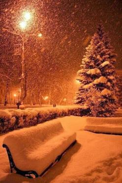 Such a beautiful snow scene.: Snowy Night, Winter Wonderland, Beautiful, Christmas, Place, Photo, Kyoto Japan