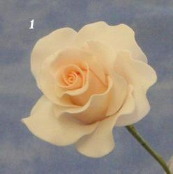 sugar paste rose tutorial.. Probably one of the easiest to follow: Sugar Flower, Fondant Flower Tutorial, Rose Tutorial, Garden Rose, Fondant Rose, Sugar Paste Rose, Fondant Tutorial