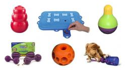The 6 Best Toys to Keep Your Dog Really Busy: Doggie, Dogs, Pup, Furbabies, Dog Toys, Animal