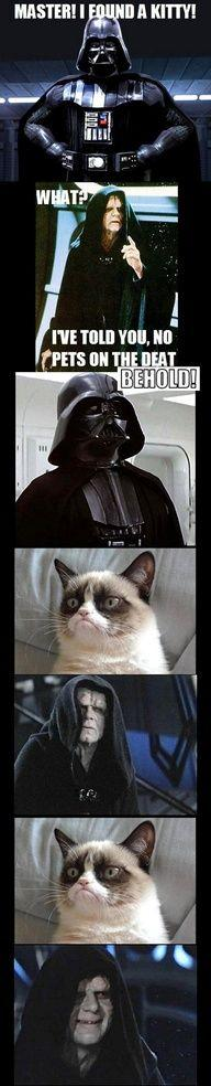 The Emperor approves of Darth Vader's suggestion - Imgur: Cats, Stuff, Grumpycat, Star Wars, Funny, Dark Side, Grumpy Cat, Starwars