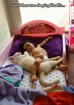 The Most Adorable Best Friends: Cats, Animals, Friends, Pet, Children, Baby, Sleeping, Kids, Photo