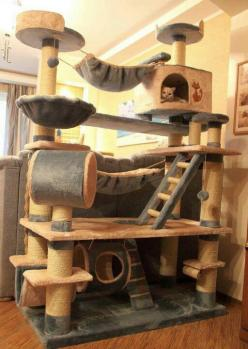 The ultimate playground for Cats <3 www.jaxsprats.com: Cats, Animals, Pets, Crazy Cat, Cat Trees, Cat House, Kitty, Cat Lady