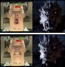 This is awesome. Both hilarious and terrifying. It's great to see the side by side: Face, Job Benedict, Funny And, Benedict And Martin, Hobbit Lotr, Lotr Hobbit, Benedict Smaug, Benedict Cumberbatch