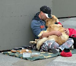 THIS is why I love dogs so much: Unconditional Love, Best Friends, Dogs, Sweet, Pet, Mans Best Friend, Animal