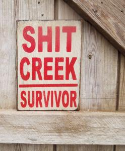 This shop makes the most wonderful upcycled recycled wood signs.  Hand painted I have them hanging in my studio.  Love this shop.  Funny quotes sign Shit Creek Survivor sign by KingstonCreations: Signs, Creek Survivor, Shit Creek, Funny Quotes, Funny Stuf