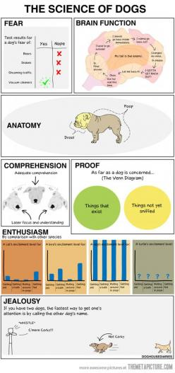 Too funny! Science of a dog. Need to find poster of this!: Animals, Dogs, Stuff, Pet, Funny, So True, Funnies, Science