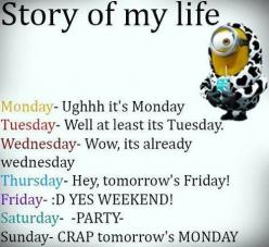 Top 30 Funniest Despicable Me Minions Quotes | http://www.meetthebestyou.com/top-30-funniest-despicable-me-minions-quotes/: Funny Minions Quotes, Funny Minion Quotes Humor, Funny Minon, Minion Funny Quotes Humor, Funny Minnion, Funny Quotes Minons, Minion