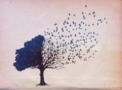 tree bird illustration: One Day, Tattoo Ideas, Inspiration, Quotes, Dream, Tattoos, Art, Trees