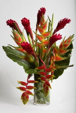 Tropical Flower Arrangements | - Flowers San Francisco - Tropical Heliconia Floral Arrangement ...: Centerpiece, Tropical Flowers Arrangements, Floral Design, Tropical Floral Arrangements, Flower Arrangements, Exotic Flowers, Tropical Flower Arrangements,