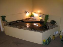 Ultimate indoor turtle habitat! Because turtles need love too ...: Animals, Turtle Habitat Ideas, Turtles, Turtle Tank, Aquatic Turtle, Turtle Enclosure, Turtle Ideas