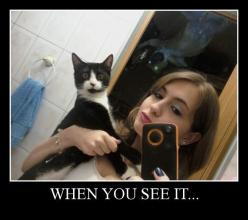 When You See it: Post Apparently kitty does.: Cats, Scary, Stuff, When You See It, Random, Cat Sees, Animal
