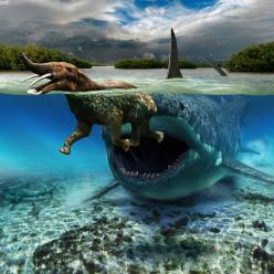 While we may not have time machines, a Canadian paleoartist, Julius Csotonyi, provides us with the next best thing in an illustration from his new book.: Animals, Prehistoric Animal, Paleoart, Prehistoric Creatures, Dinosaurs, Sharks