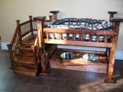 wow - dog bed: Dogbeds, Idea, Dogs, Pets, Bunk Bed, Dog Beds, Dog Stuff, Animal