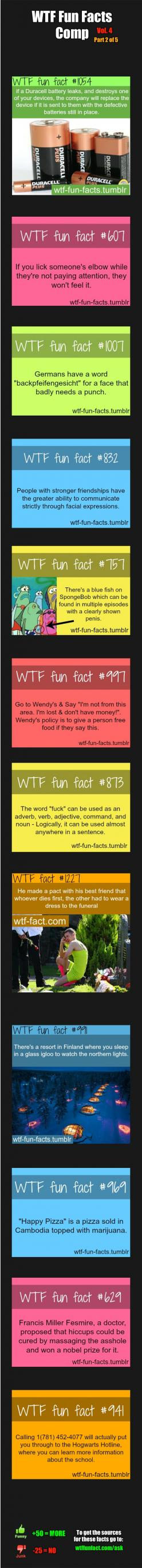 WTF Fun Facts Comp Vol. 4 Part 2: Funny Facts, Mindblown, Wtf Fun Facts, Facts Comp, German Word, Wtffunfacts Funny, Funny Wtf Facts, Wtffunfacts Weird, Funny Fun Facts